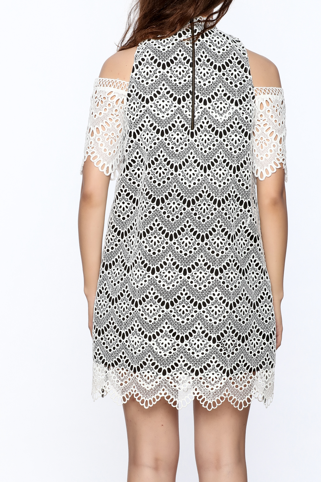 KAS New York Semi Lined Lace Dress - Back Cropped Image