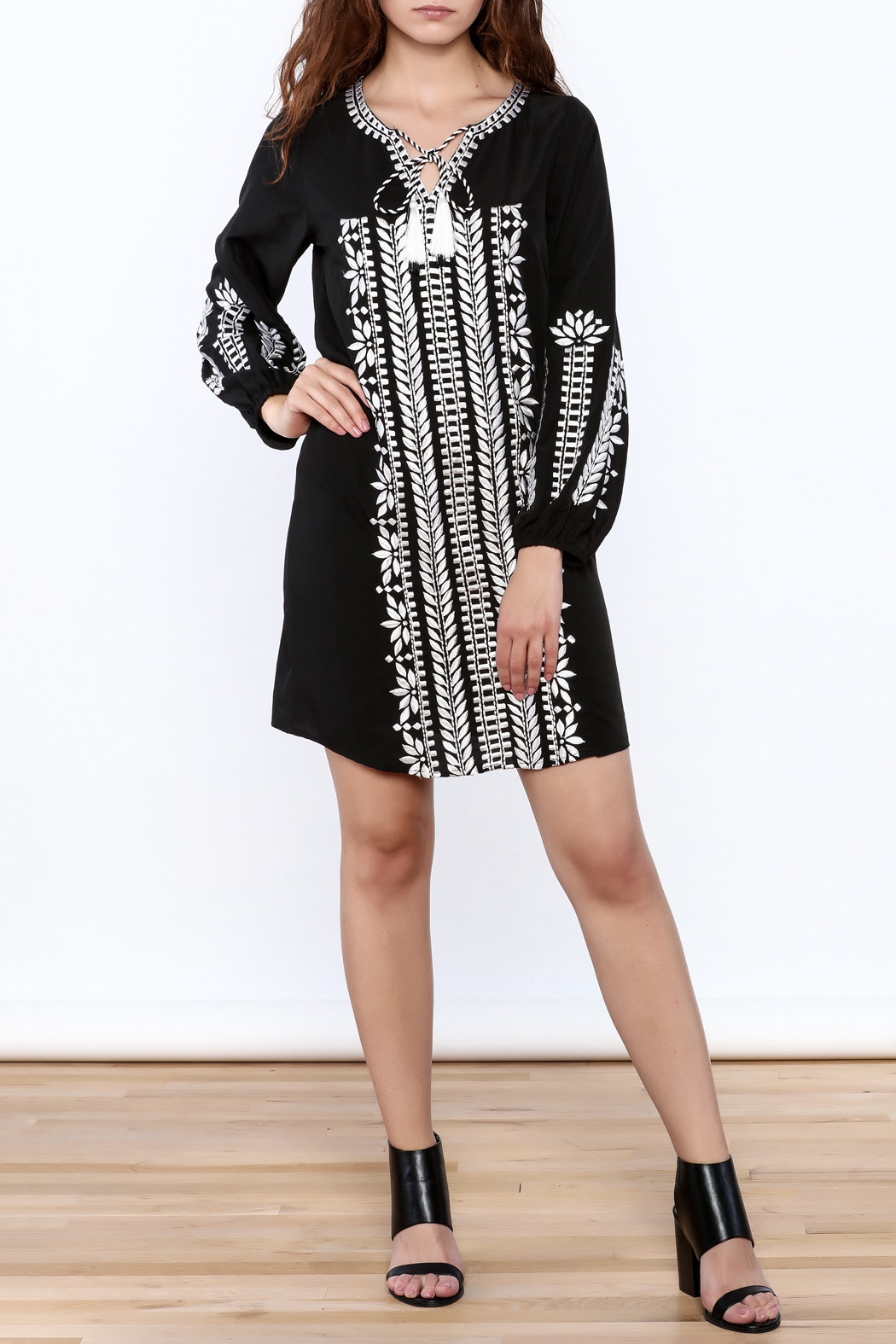 KAS New York Trudy Embroidered Dress - Front Full Image