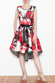 Katherine Barclay Floral Swing Dress - Product Mini Image
