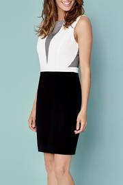 Katherine Barclay Black White Mesh Dress - Front cropped