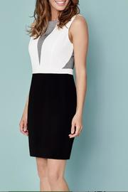 Katherine Barclay Mesh Dress - Product Mini Image