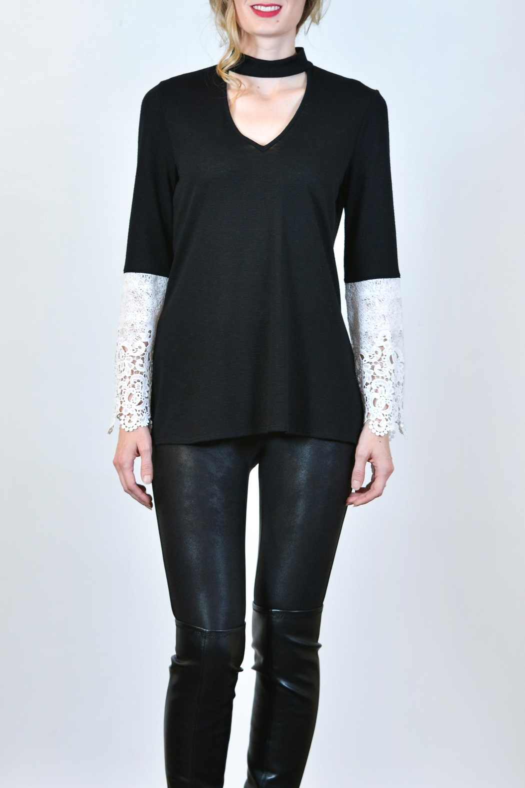 Kay Celine Lace Arm Top - Front Cropped Image