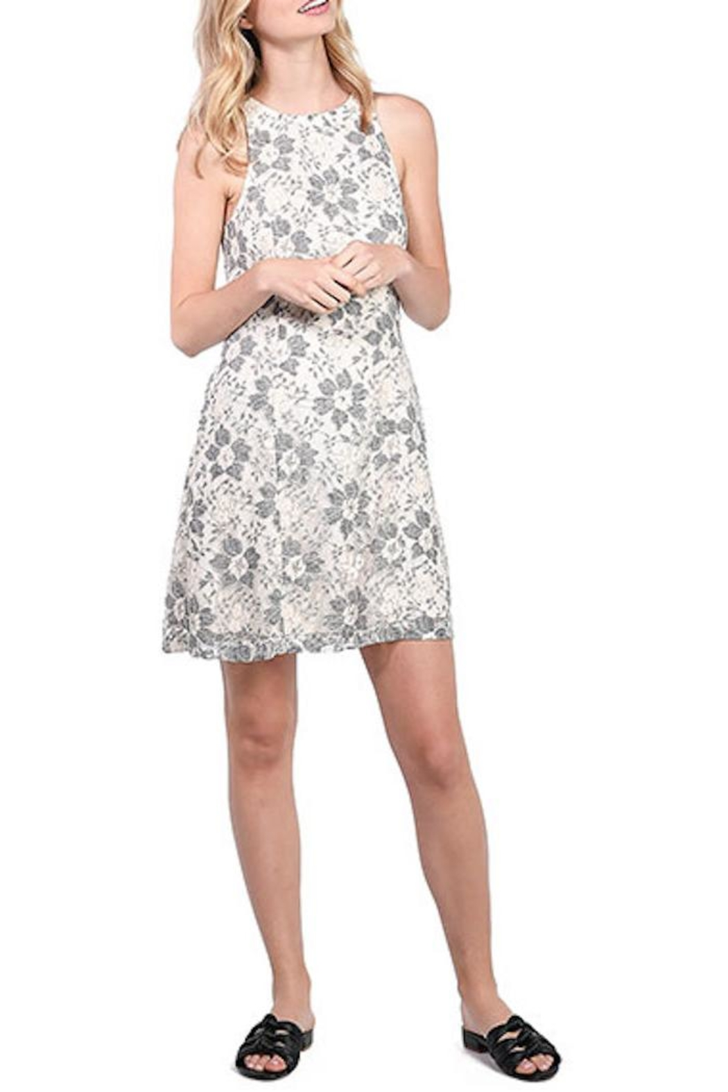 Kensie Blossom Lace Dress - Main Image
