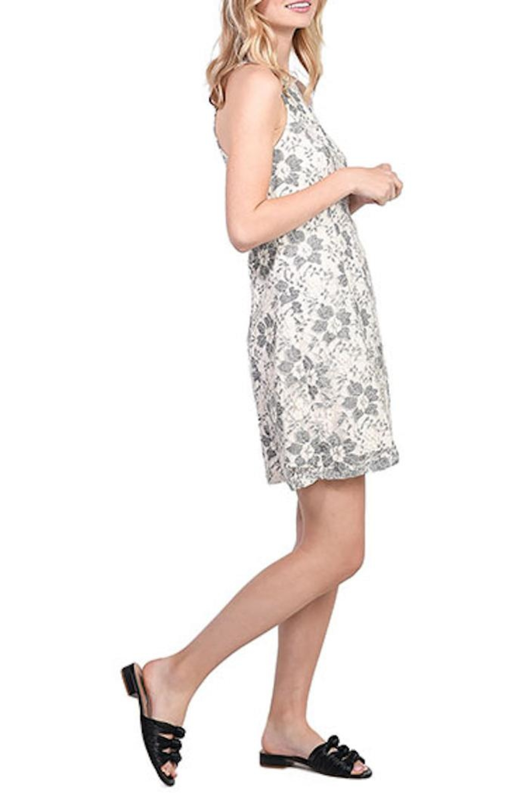 Kensie Blossom Lace Dress - Front Full Image