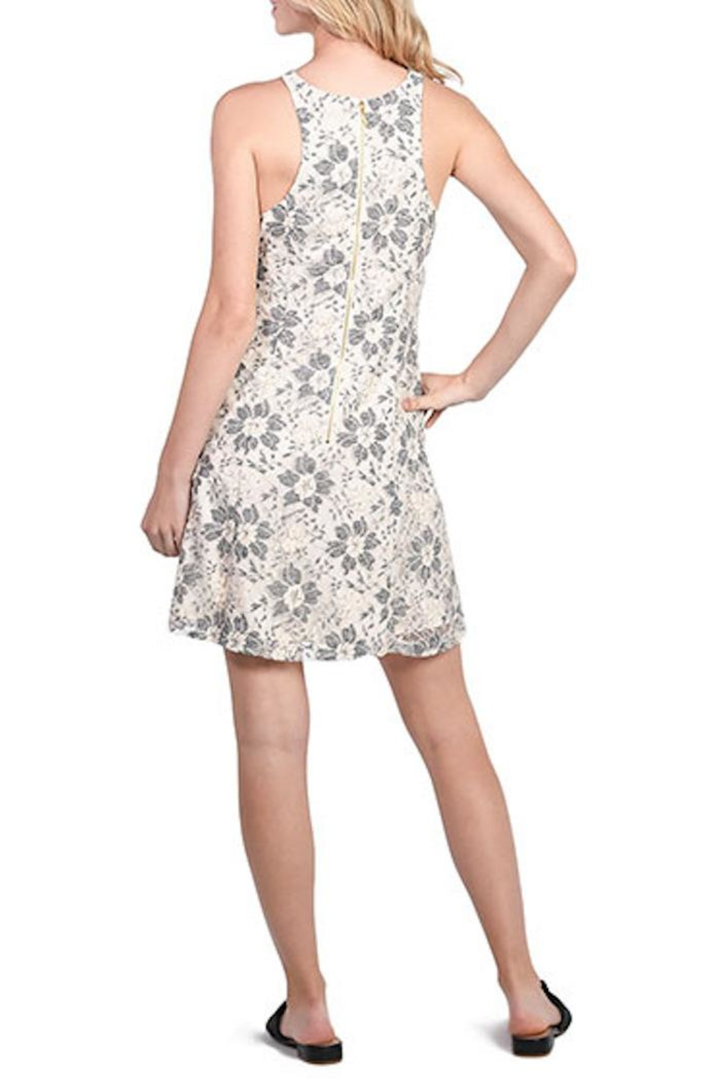 Kensie Blossom Lace Dress - Side Cropped Image