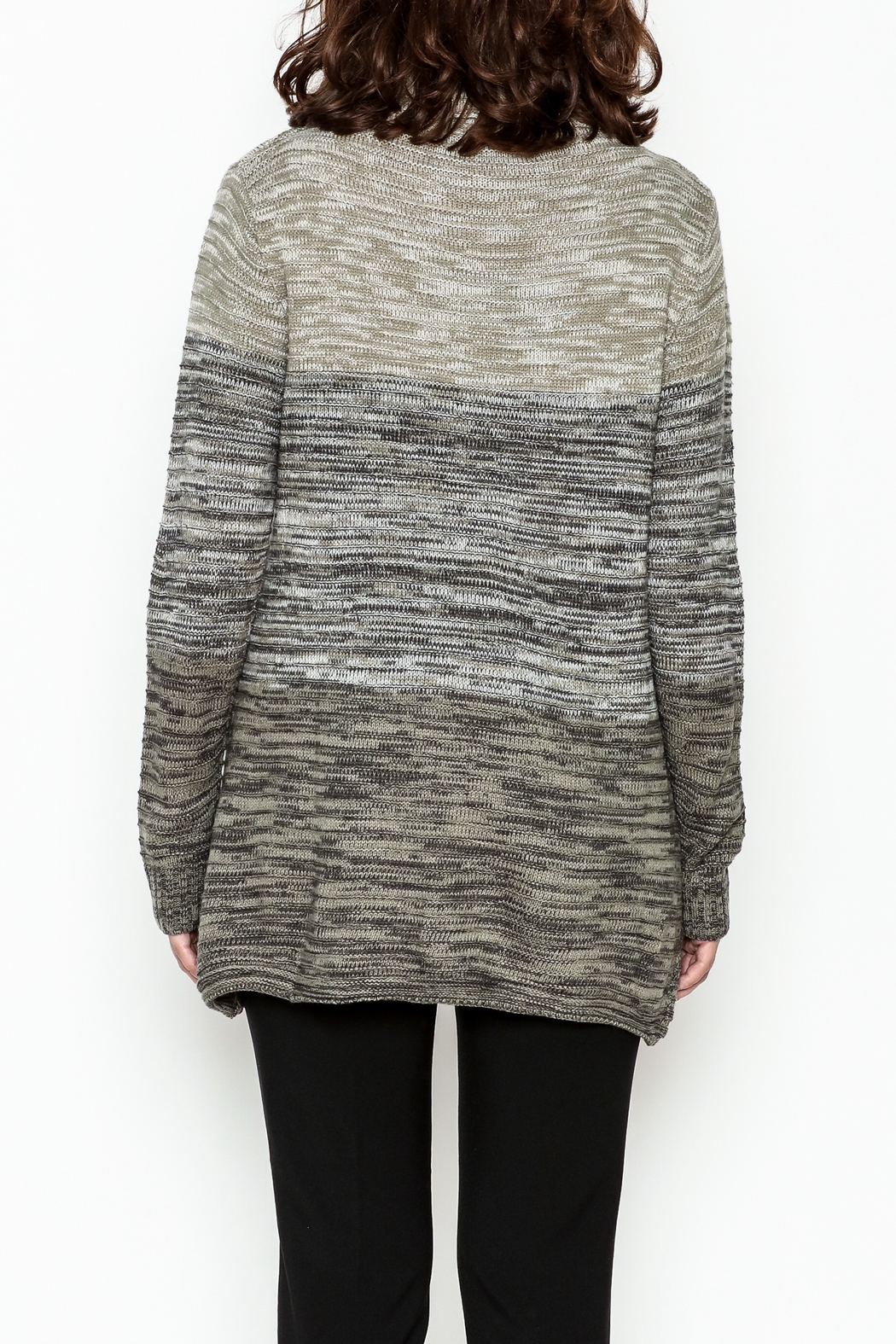 Keren Hart Variegated Cowl Neck Sweater - Back Cropped Image