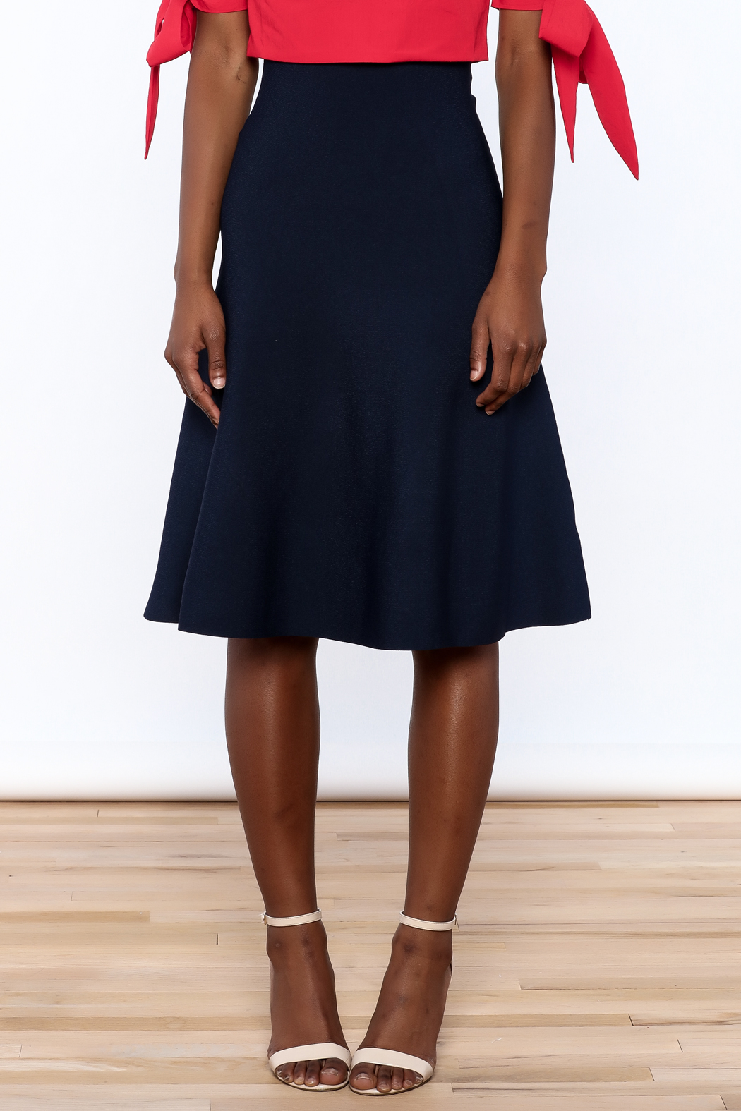 Kerisma Navy A-Line Skirt from New York City by Jupe — Shoptiques