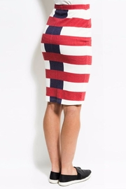 Kingdom & State Fade Skirt - Front full body