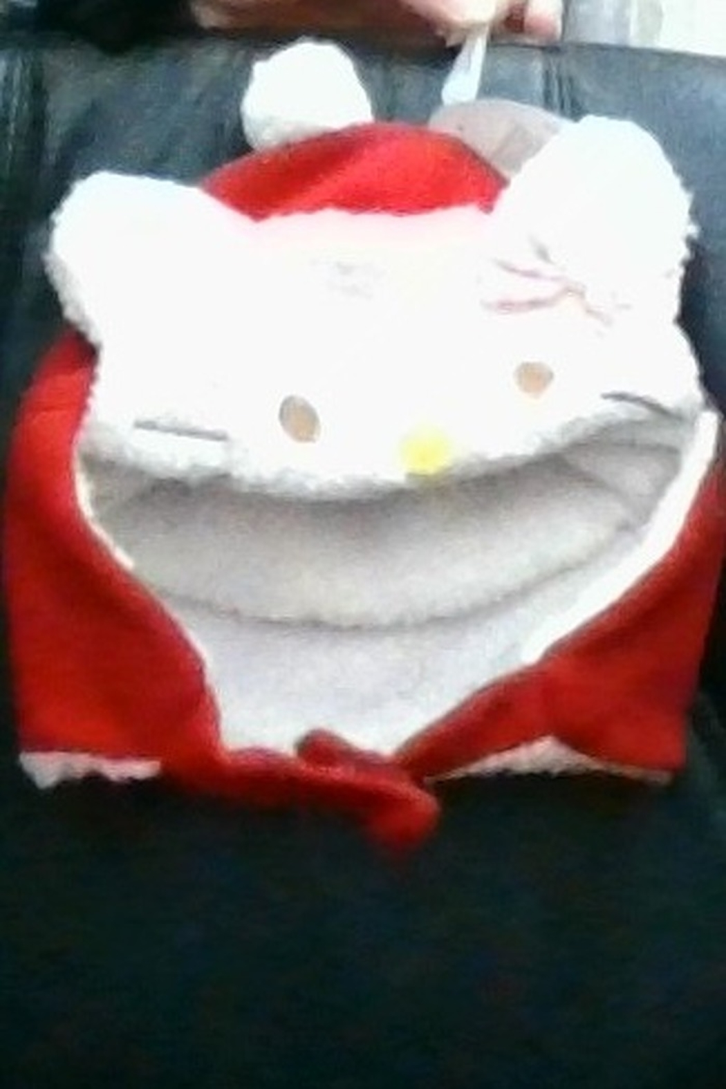 The Winter Kitty Winter Hat - Front Cropped Image