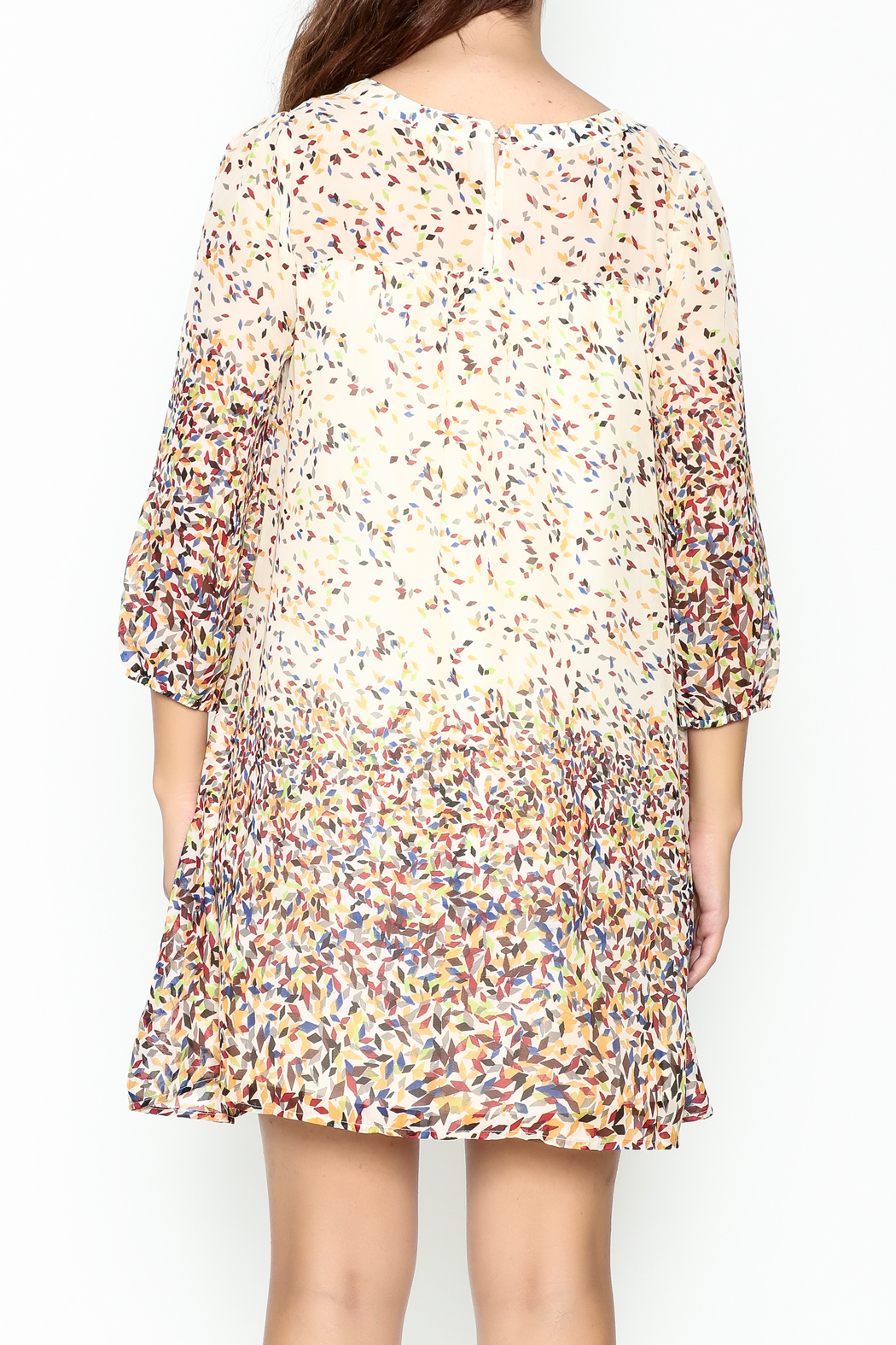 KORI AMERICA Confetti Dress - Back Cropped Image