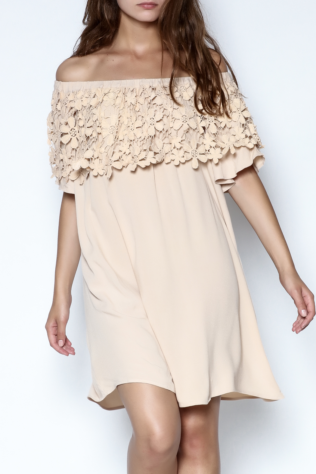 KORI AMERICA Lace Collar Dress - Front Cropped Image