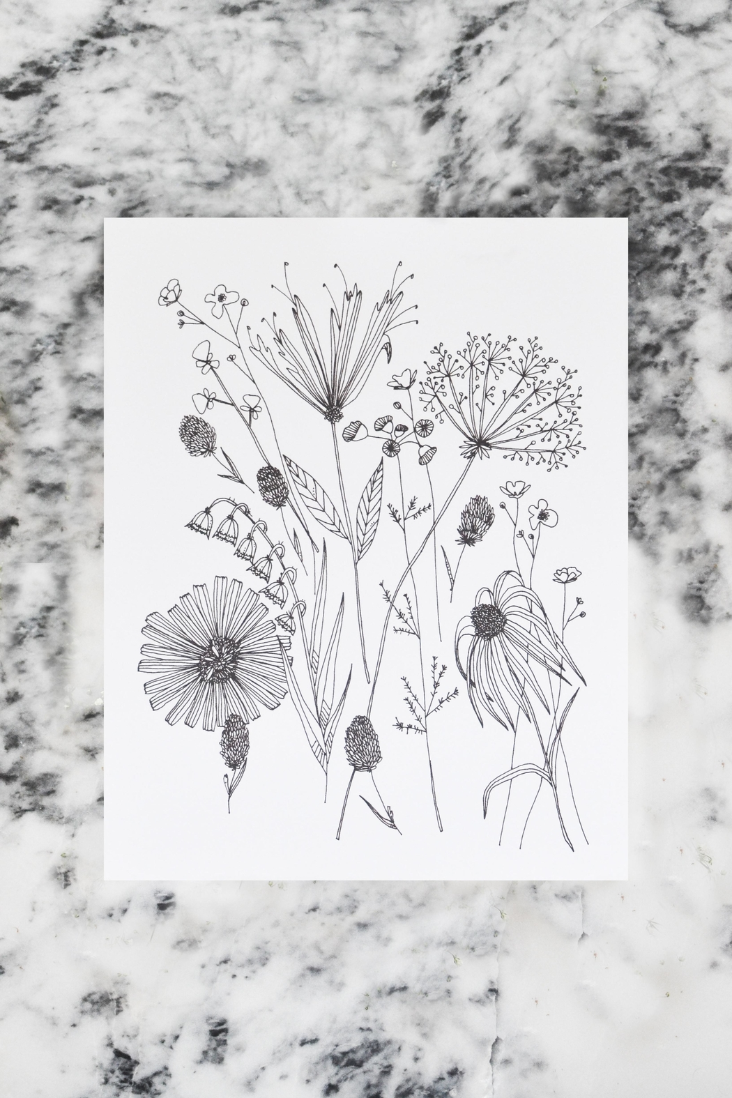 KP Studio Wildflower Decor Print - Front Cropped Image