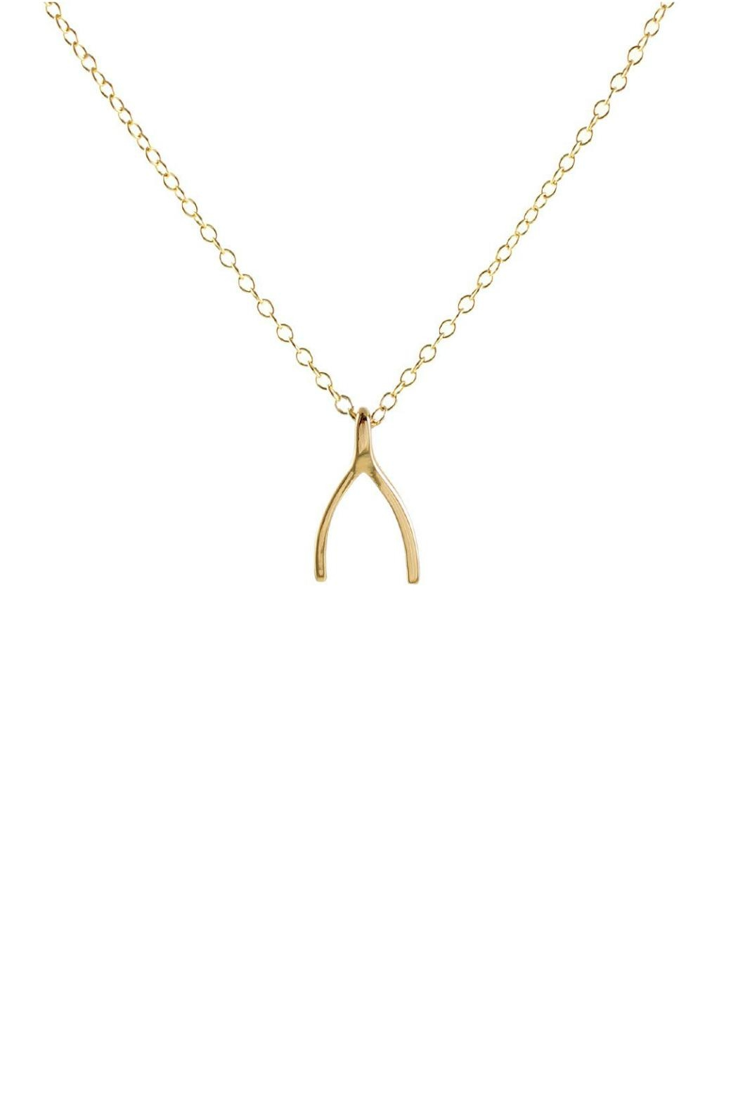 Kris Nations Wishbone Charm Necklace - Main Image