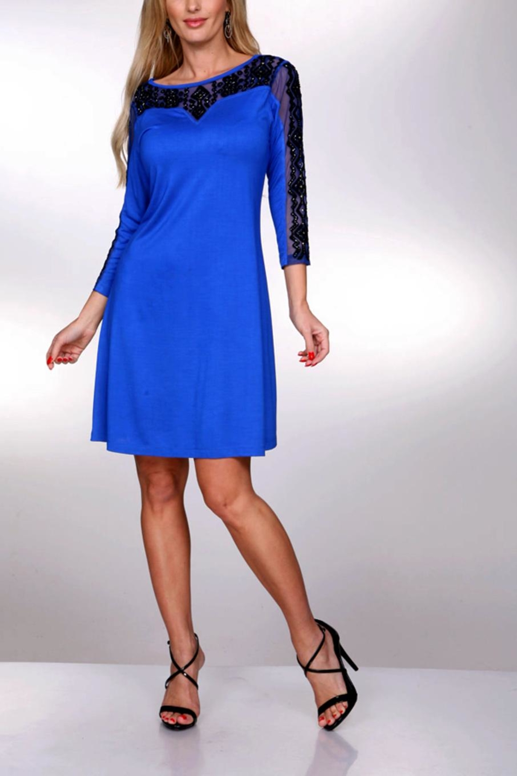Krista Lee Blue Emb. Dress - Main Image