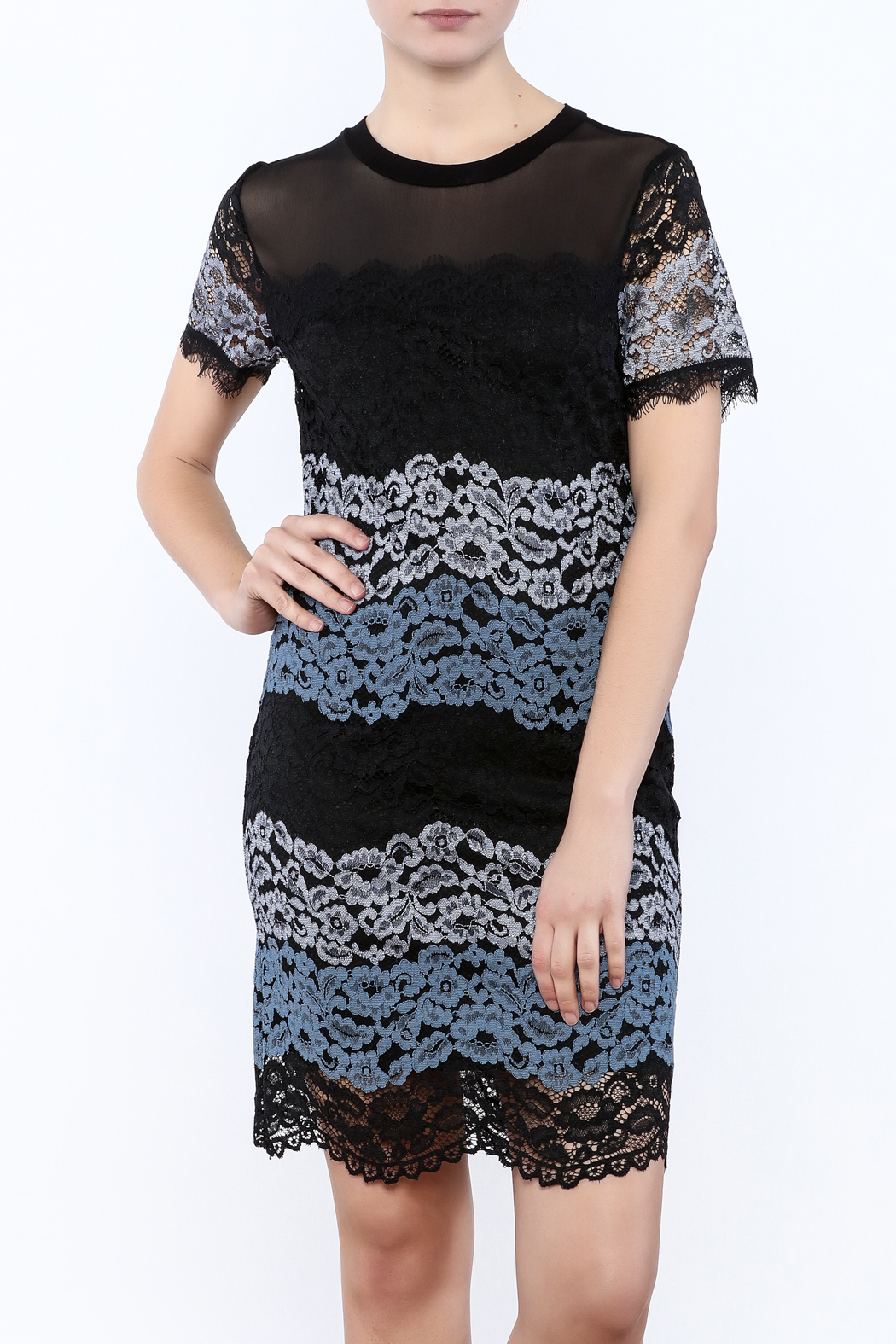 Kut from the Kloth Lace Color Block Dress - Main Image