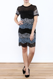Kut from the Kloth Lace Color Block Dress - Front full body