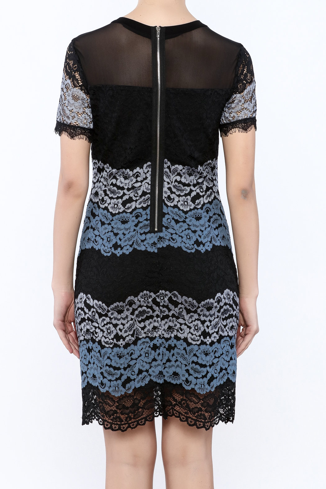 Kut from the Kloth Lace Color Block Dress - Back Cropped Image