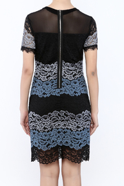 Kut from the Kloth Lace Color Block Dress - Back cropped
