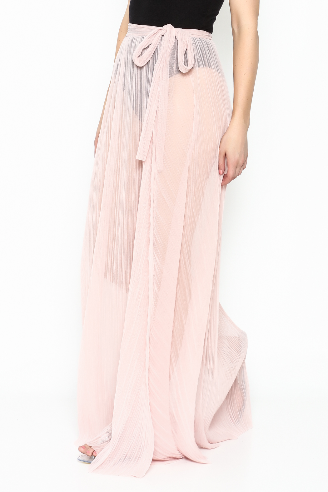 KUT Mesh Coverup Skirt - Front Cropped Image