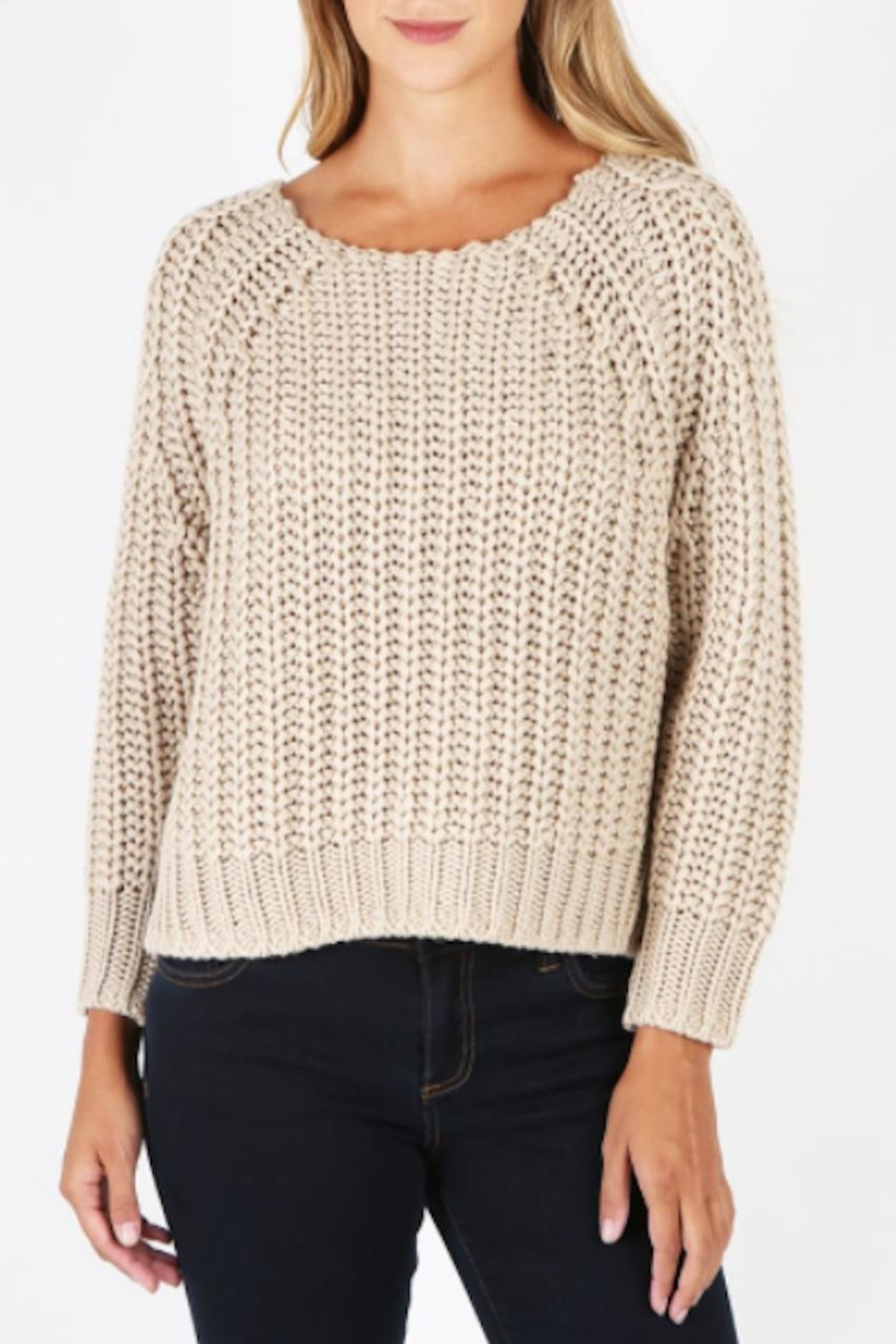 Kut from the Kloth Page Chunky Sweater - Front Cropped Image