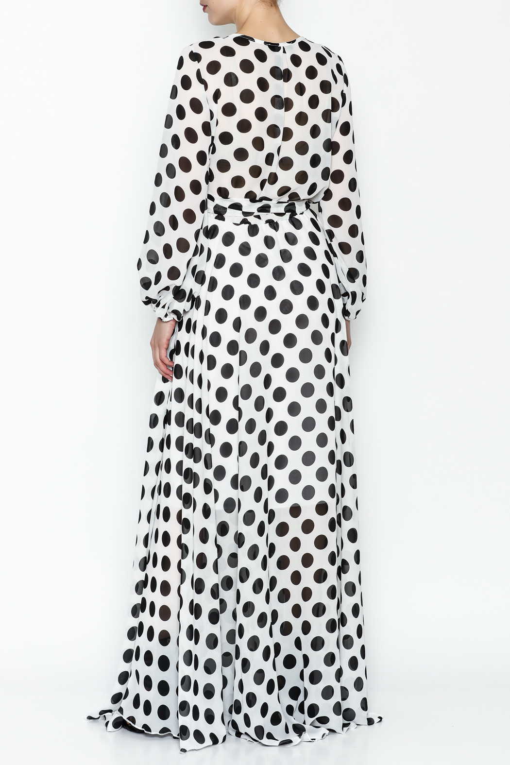 L & C Bold Dot Maxi Dress - Back Cropped Image