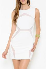 L'atiste Mesh Paneled Dress - Product Mini Image