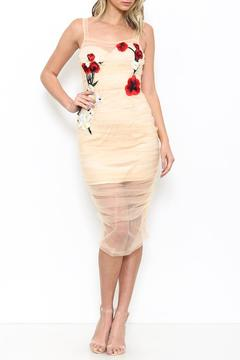 Shoptiques Product: Sheer Tulle Dress