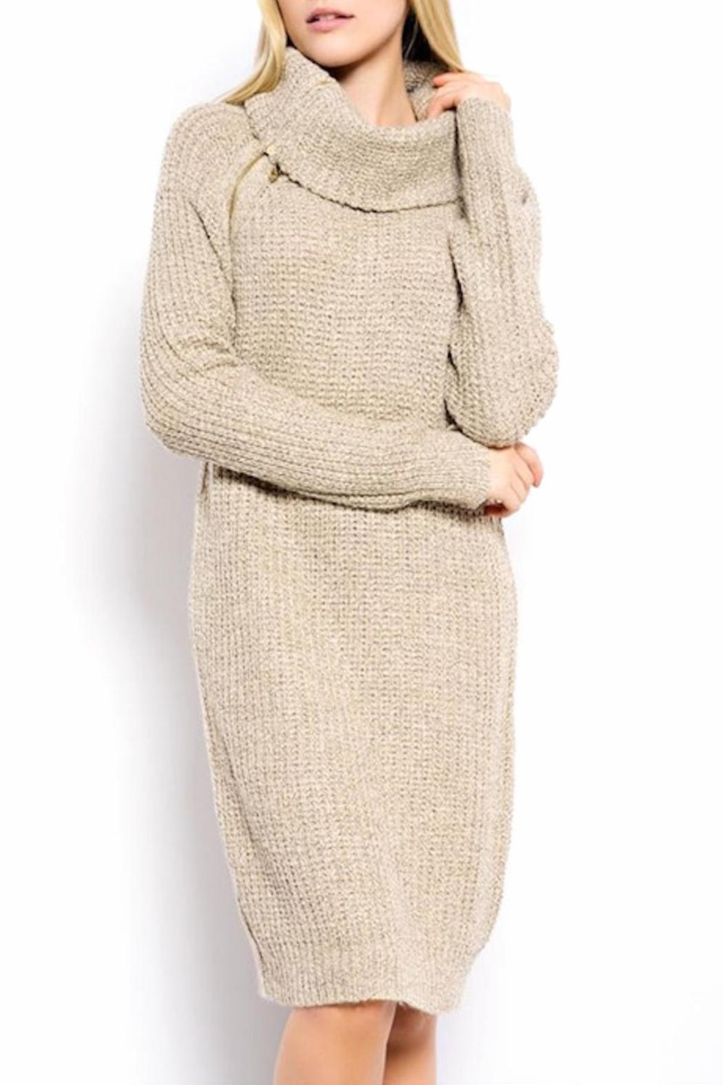 c4a29d77a39 la di da dee Webster Sweater Dress from Brooklyn — Shoptiques