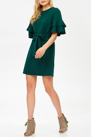 Labanga Hunter Ruffle Dress - Side cropped
