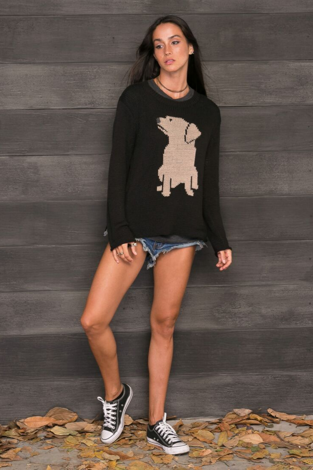 Wooden Ships Labrador Cotton Pullover - Front Full Image