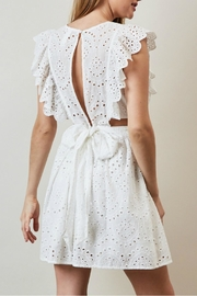 Pretty Little Things Lace Apron Dress - Front full body
