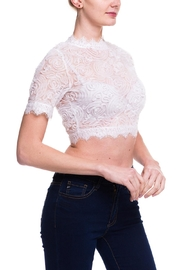 Love Song Lace Crop Top - Front full body