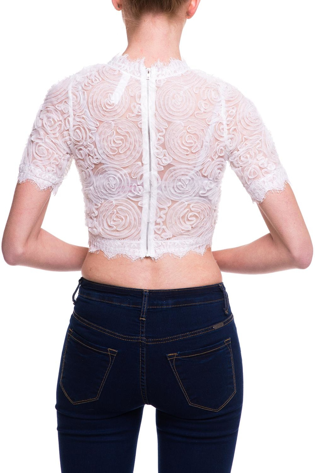 Love Song Lace Crop Top - Side Cropped Image