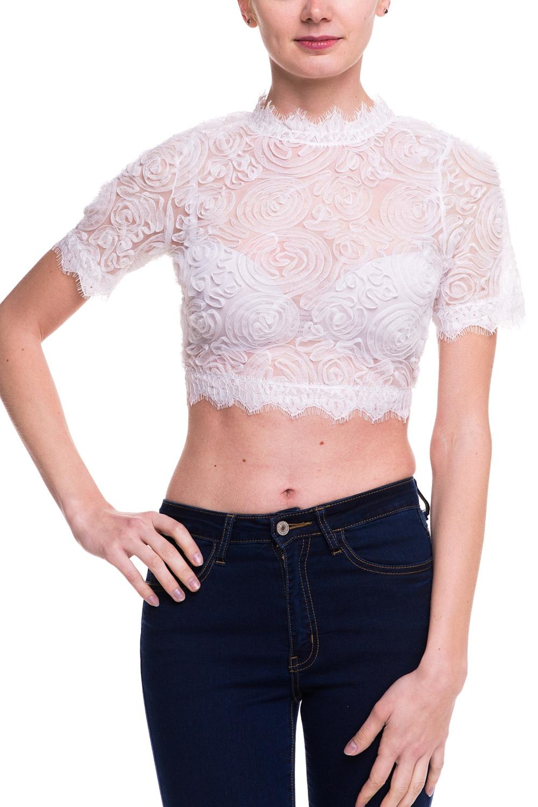 Love Song Lace Crop Top - Front Cropped Image