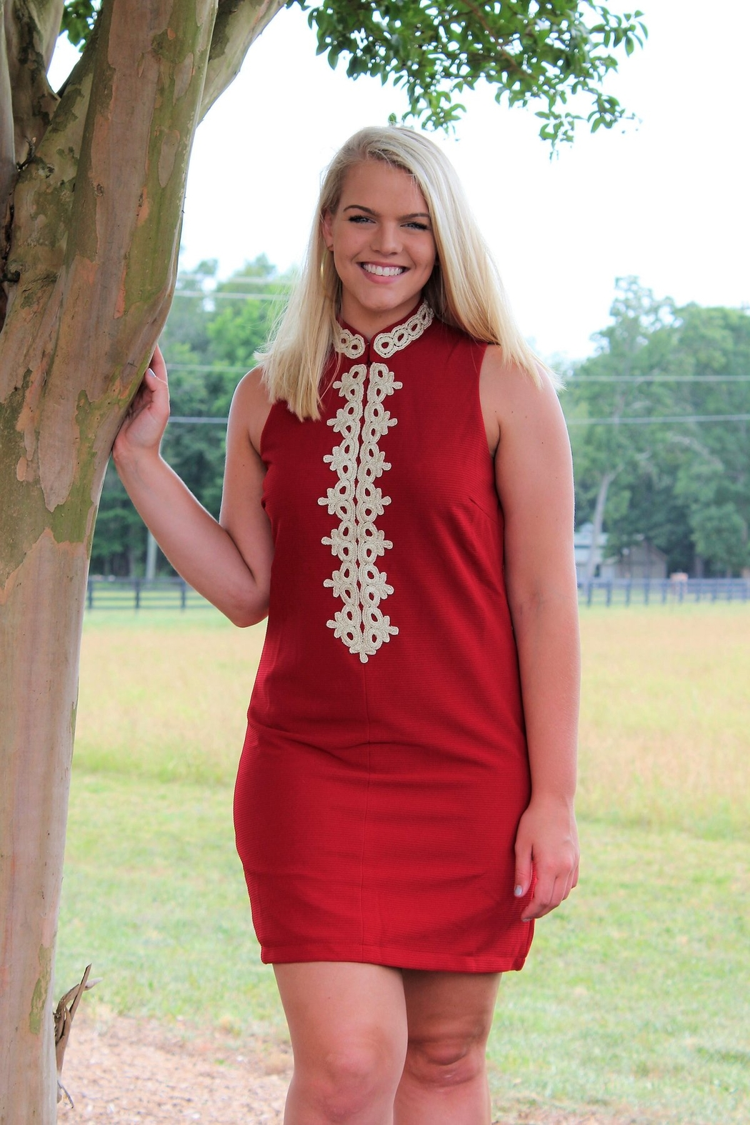 Aryeh Lace Detail Shift Dress - Front Full Image