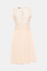 Esprit Lace Dress - Product Mini Image