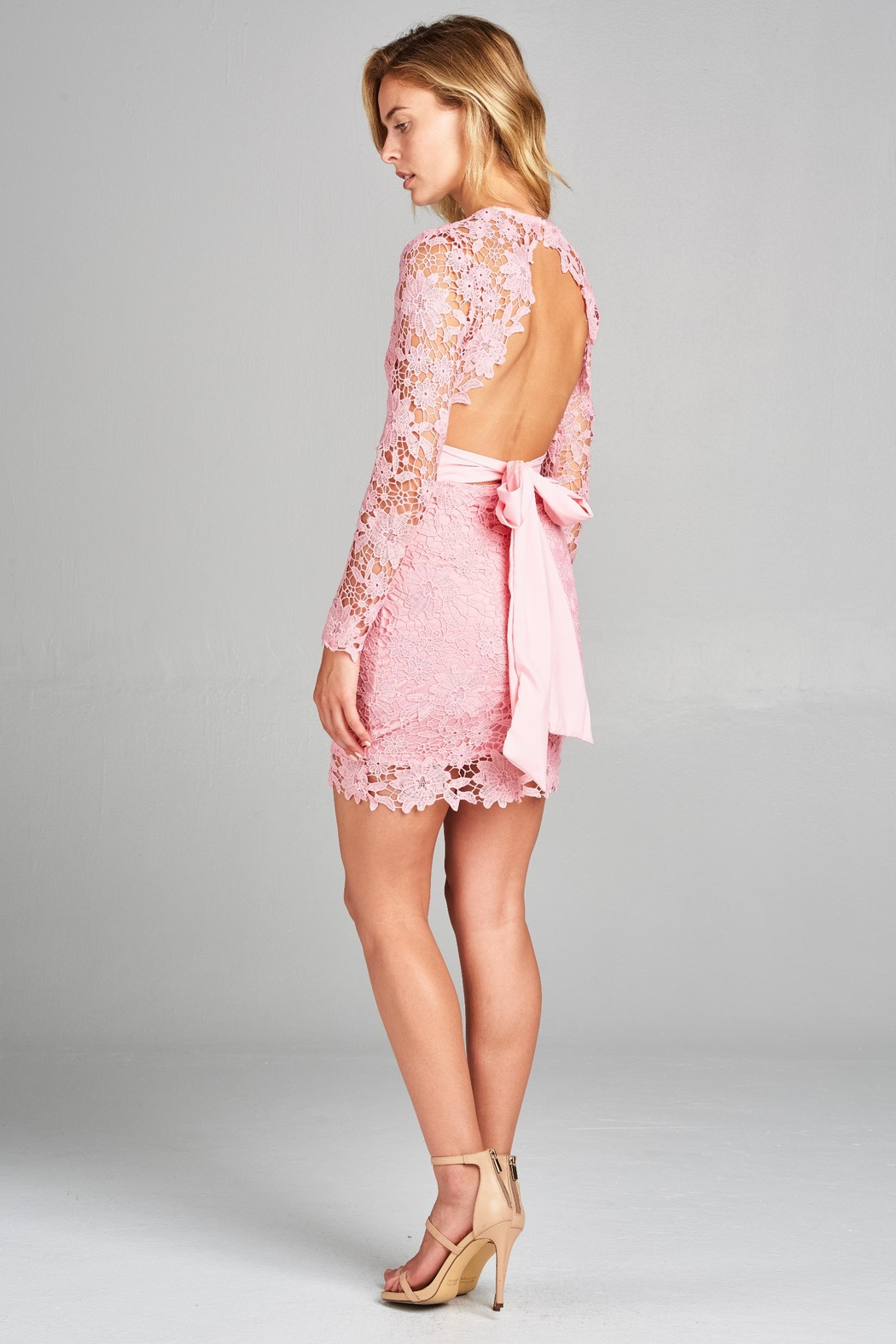 Racine Lace Fitted Dress - Side Cropped Image