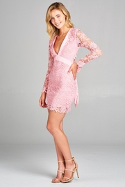 Racine Lace Fitted Dress - Other