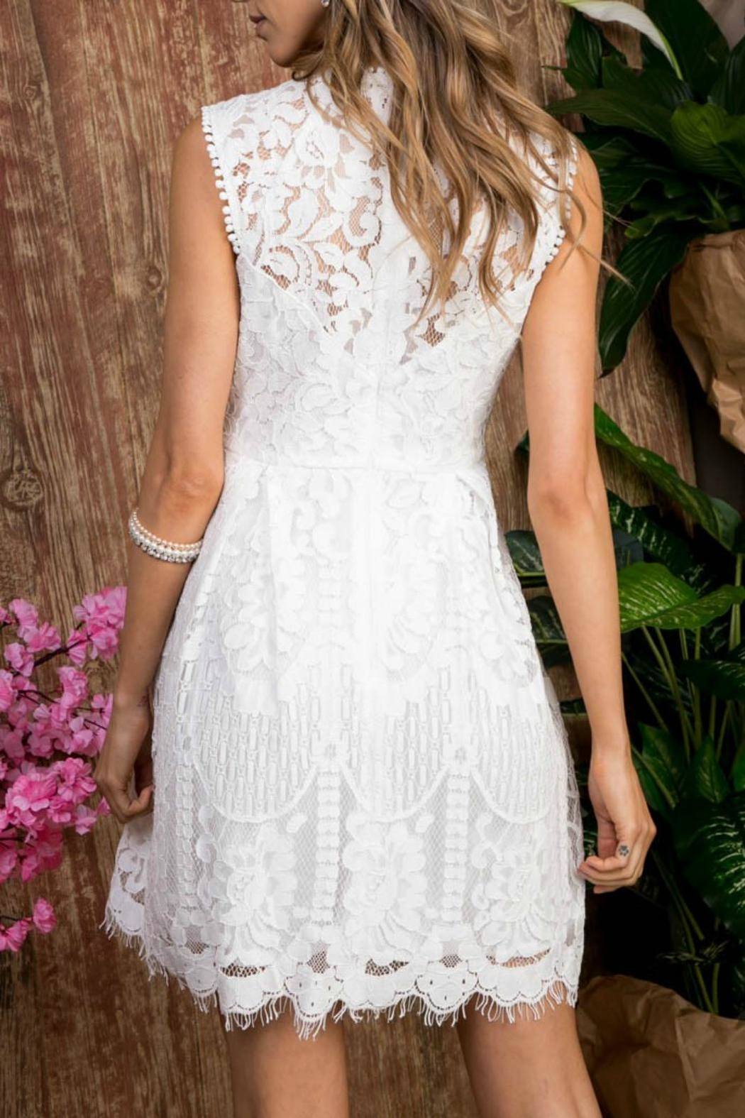 Pretty Little Things Lace Flare Dress - Front Full Image