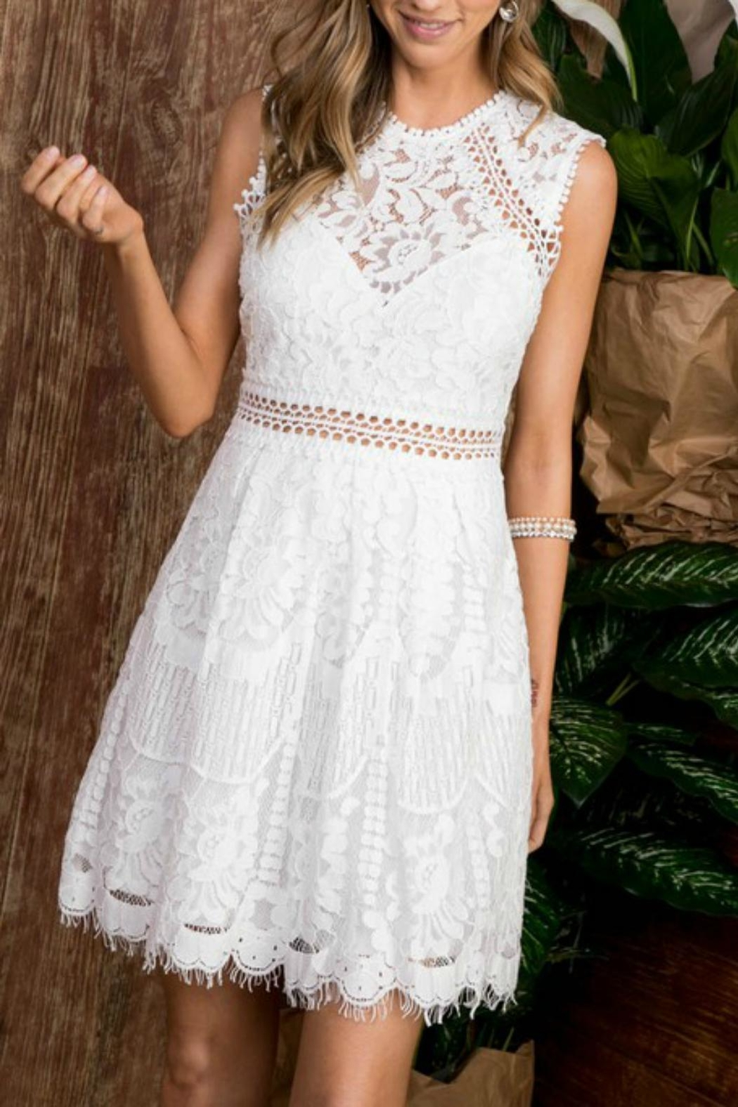 Pretty Little Things Lace Flare Dress - Main Image