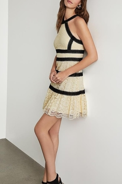 BCBG Max Azria Lace Halter Dress - Product List Image