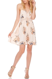 Anama Lace-Insert Floral Mini-Dress - Front cropped