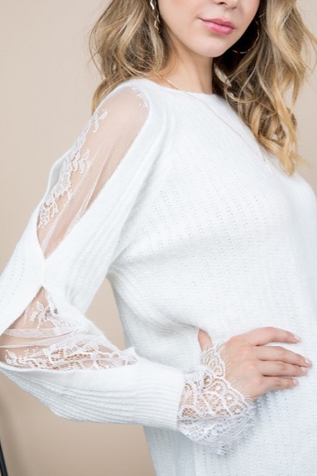 Blue B Lace Insert Sleeve Sweater - Side Cropped Image