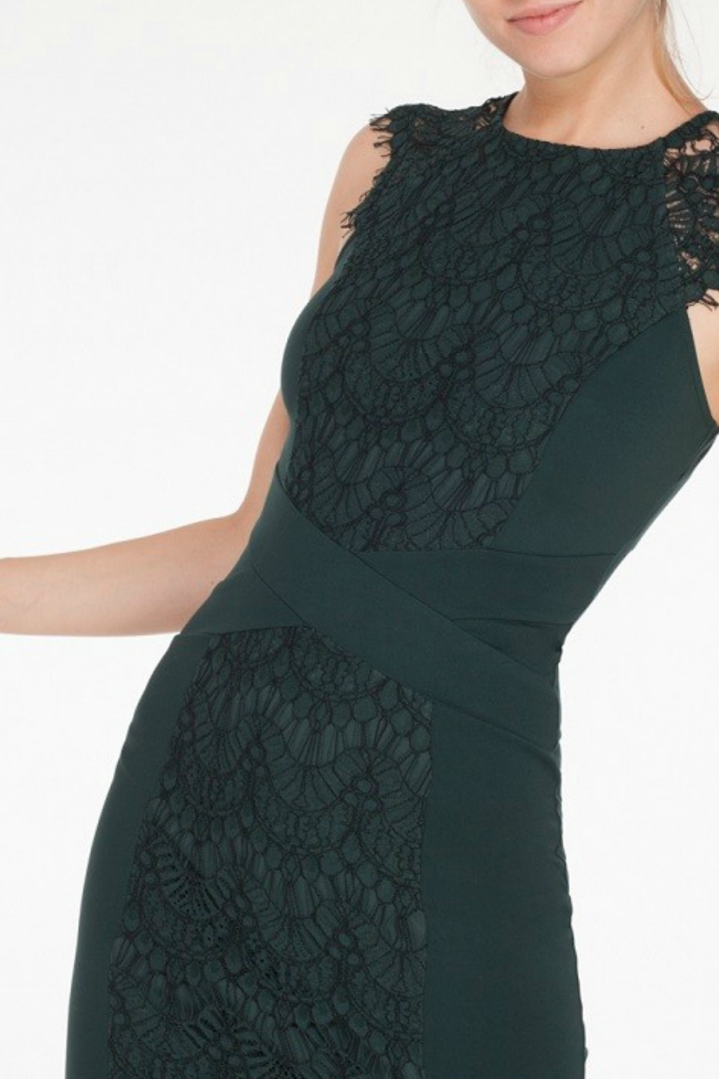 Mystic Lace Inset Dress - Side Cropped Image