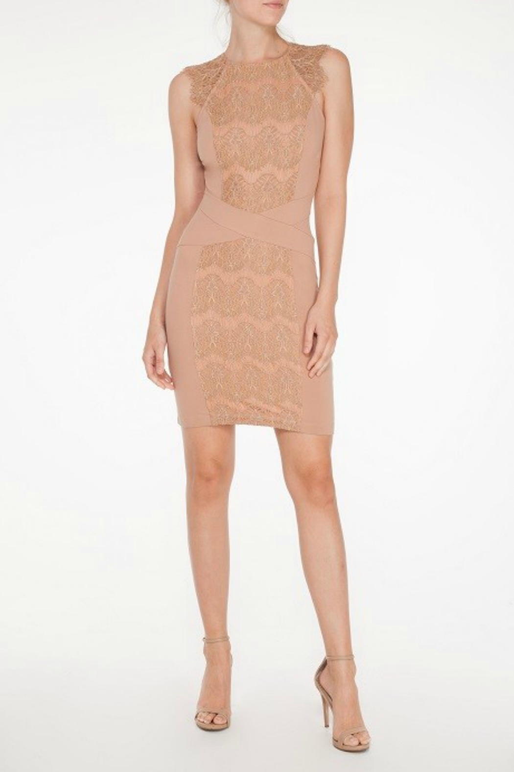 Mystic Lace Inset Dress - Front Cropped Image