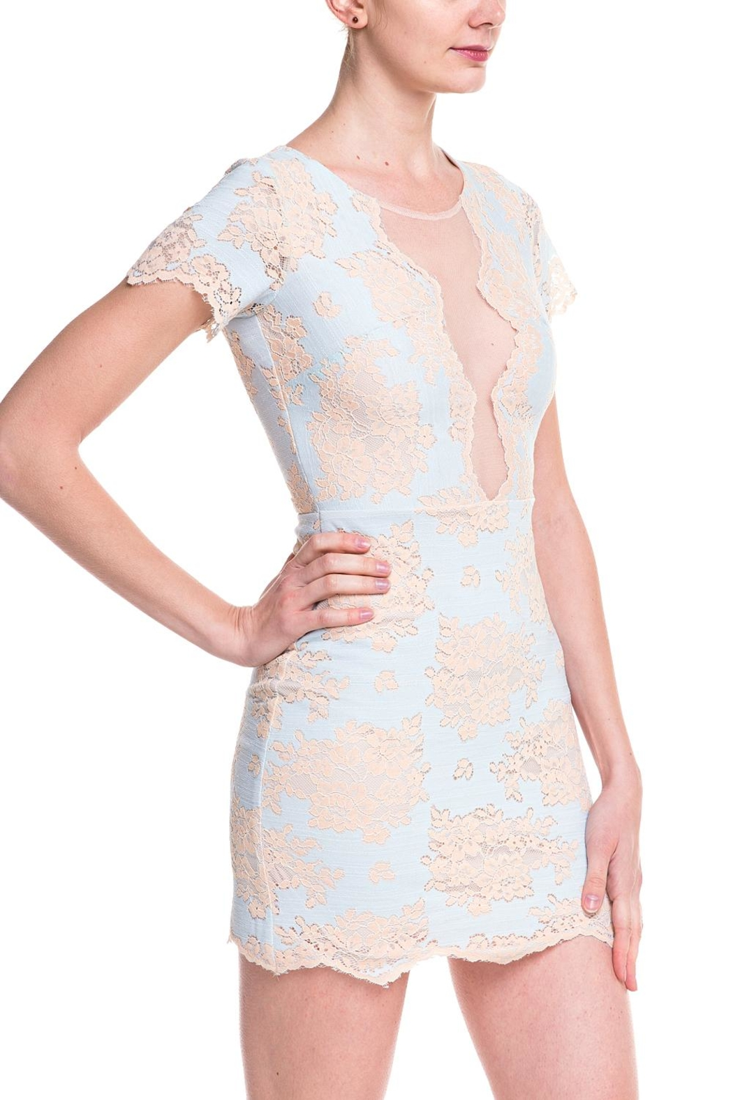 storia Lace Mesh Dress - Side Cropped Image