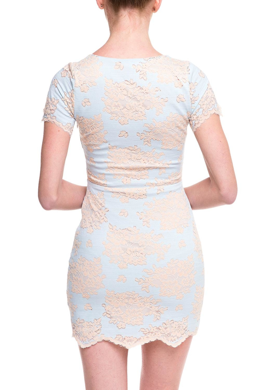 storia Lace Mesh Dress - Back Cropped Image