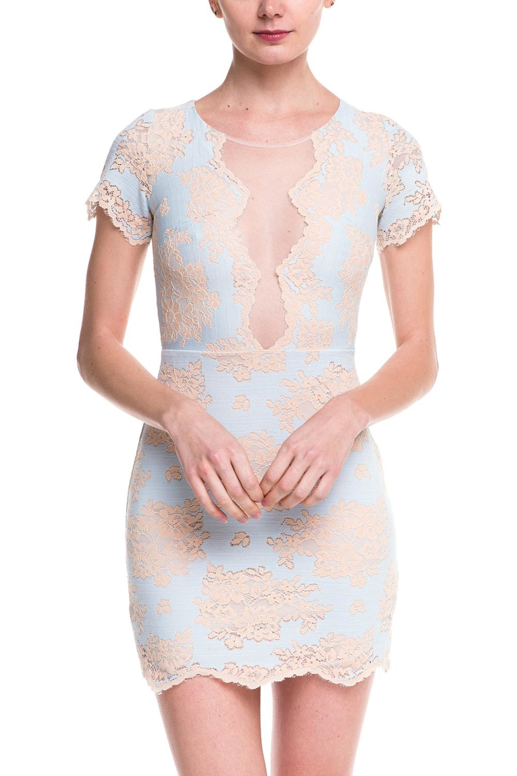 storia Lace Mesh Dress - Front Cropped Image