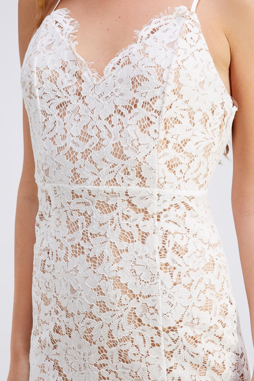 Do & Be Lace Midnight Dress - Back Cropped Image