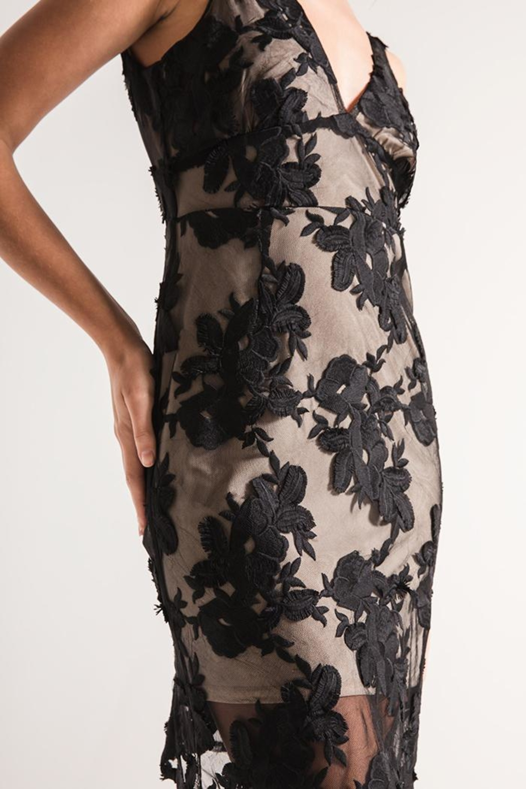 Black Swan Lace Overlay Dress - Side Cropped Image
